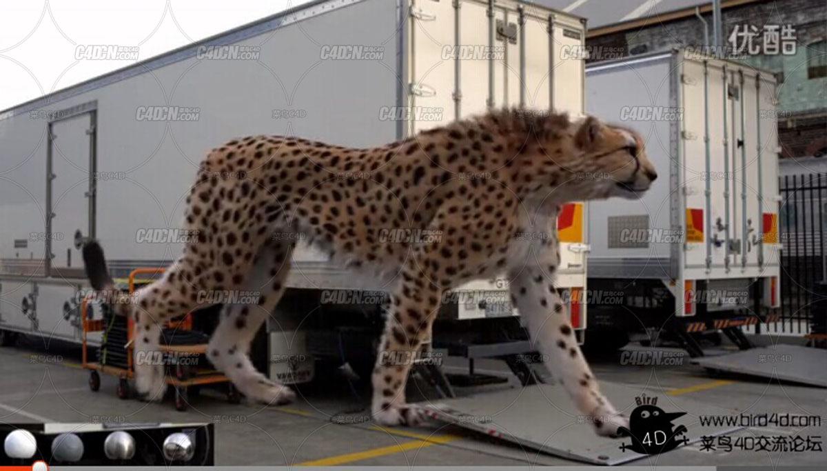 马自达CX-5电视广告制作解析 - Making of Mazda CX5 Cheetah