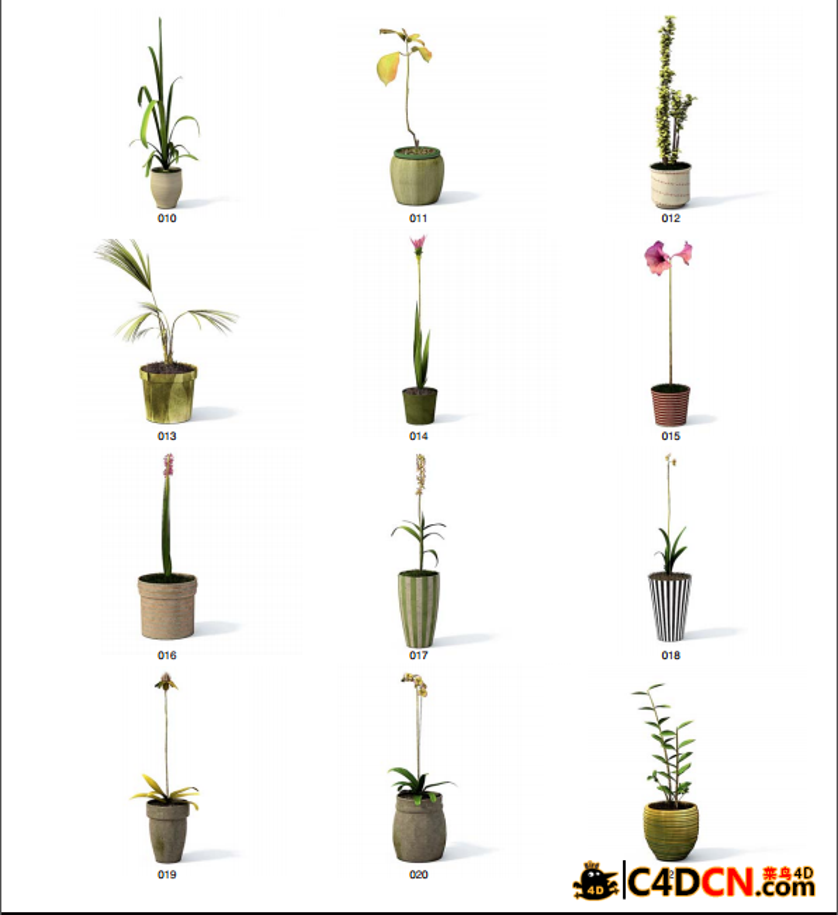 VOL.24[室内植物模型]