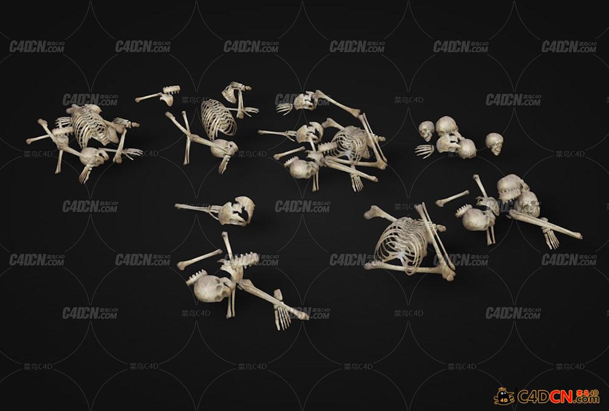 一堆骷髅枯骨模型