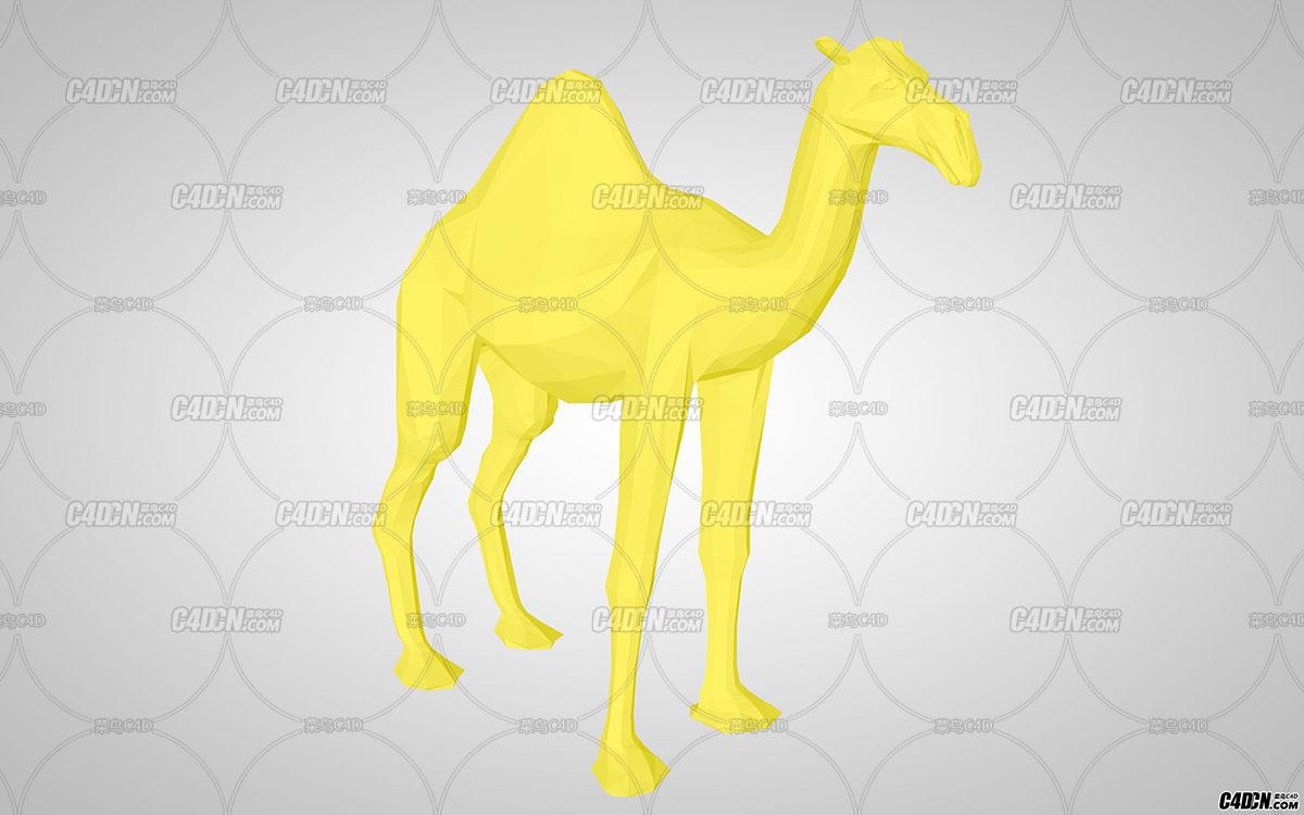 骆驼01.jpg