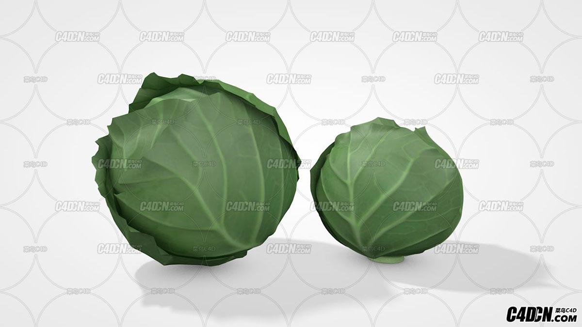 圆白菜  卷心菜 蔬菜 C4D模型