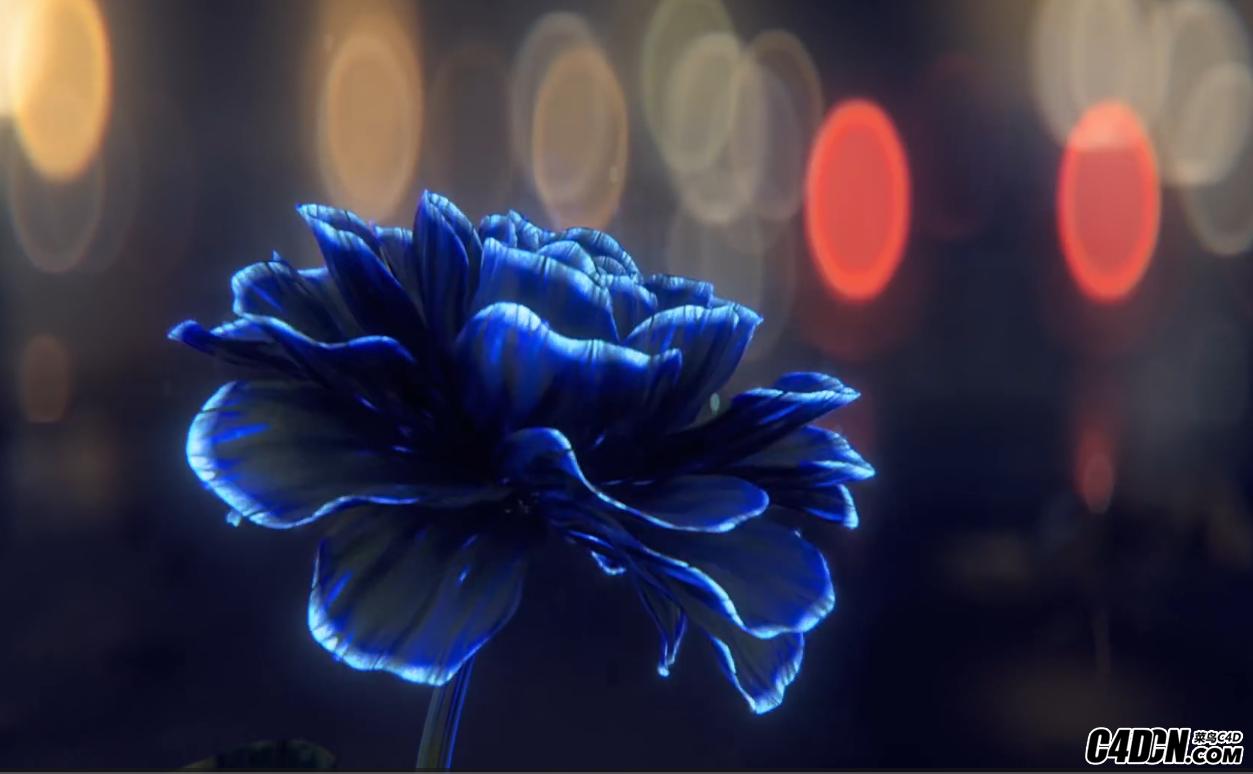 花朵00.png