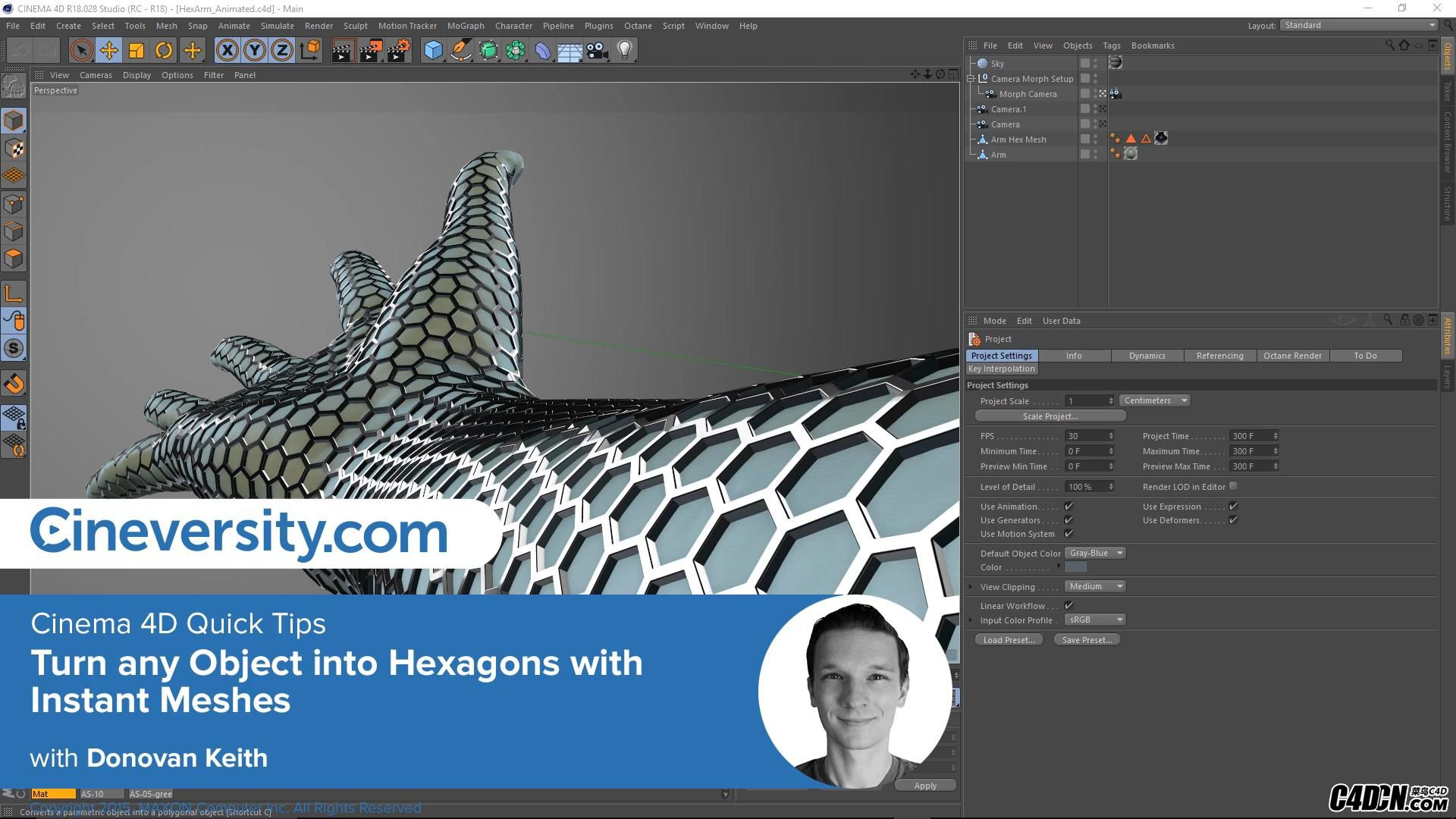 C4D转换六边形网格表面模型教程 Turn any Object into Hexagons with Instant Meshes