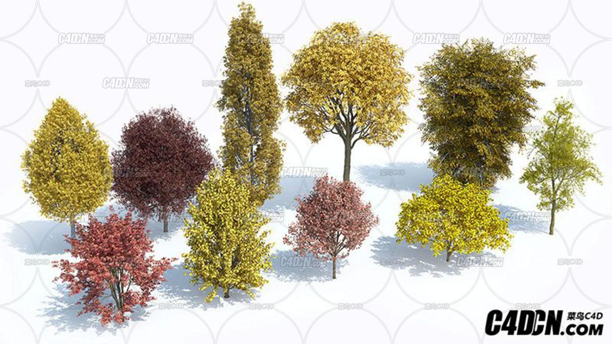 植物树木场景生成预设插件 Laubwerk Plants Kit 6 & 7