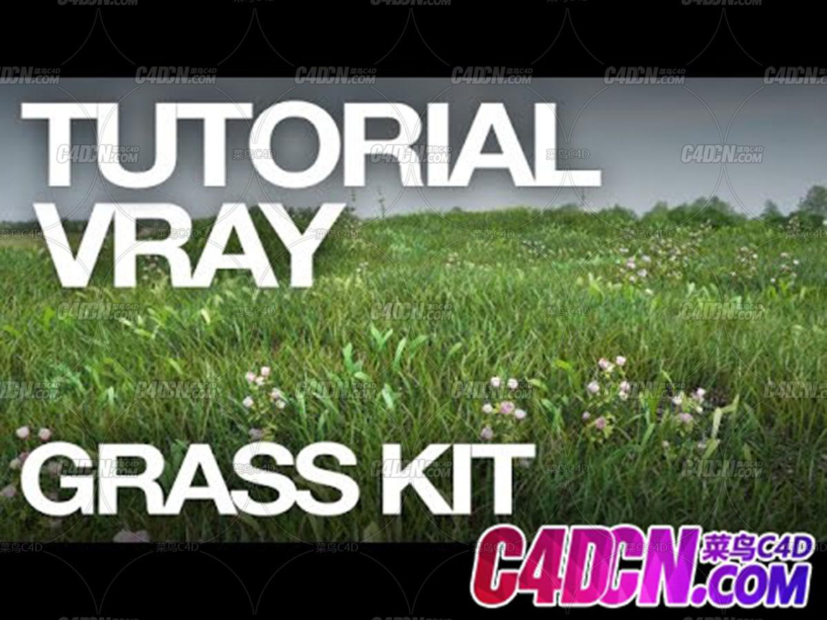 C4D草地预设花草植物生态教程 Grass Kit