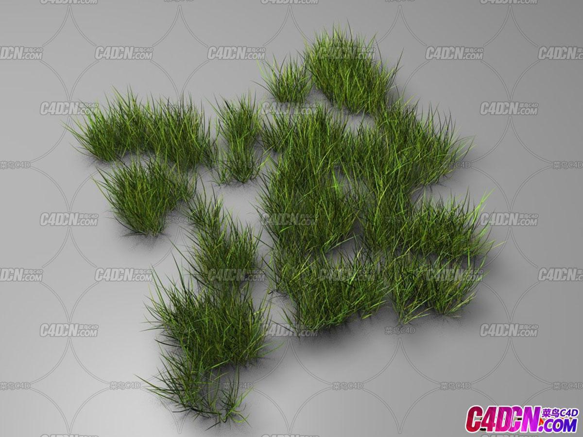 C4D Grass草丛模型