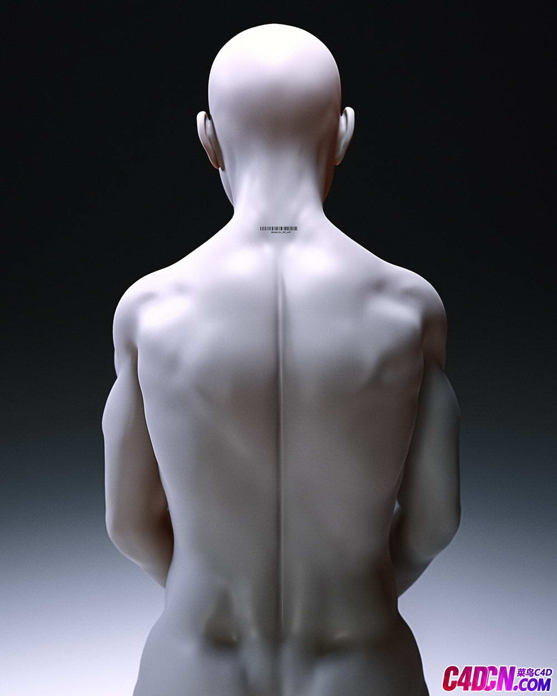 Octane渲染器男人蜡像材质C4D模型
