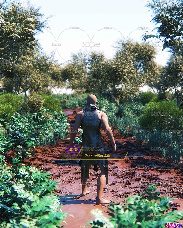 Octane渲染器行走在森林里植物画错野外的男人循环动画工程C4D模型