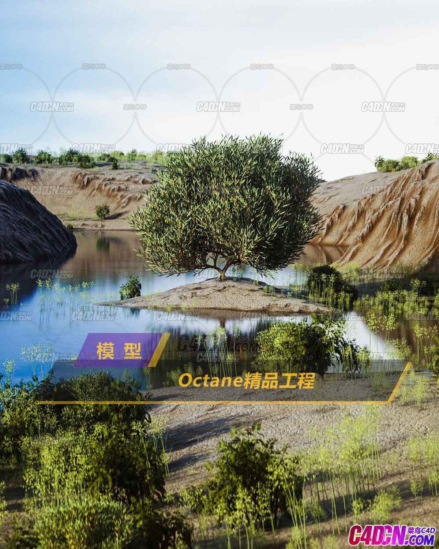 Octane渲染器小河畔大树花草植物天空C4D模型
