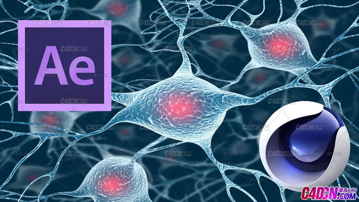 C4D+AE脑细胞神经元医学材质医疗动画C4D教程