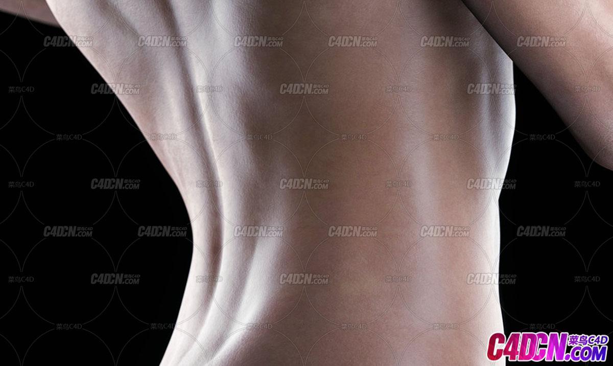 C4D OCTANE渲染器动画工程 女性女人身体皮肤SSS材质渲染工程