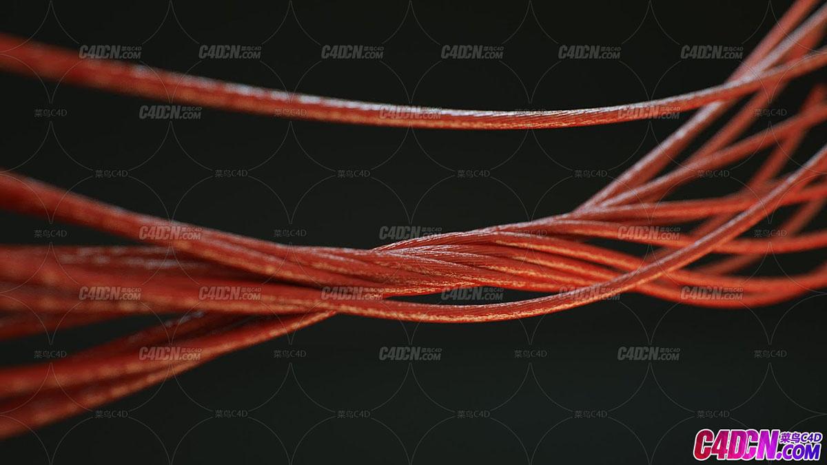 C4D插件 绳子生成插件汉化版 HoRope master