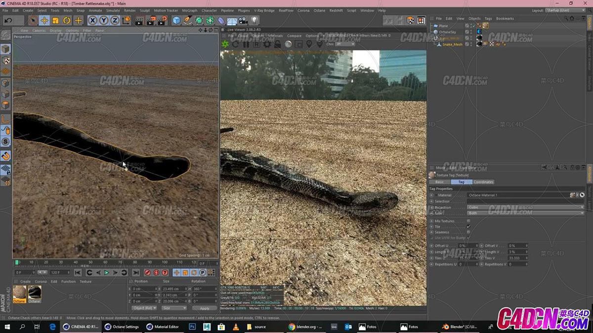 The Snake Tutorial (Cinema 4D _ Octane Render) - Rigging,Texturing, etc_20190424011135.JPG