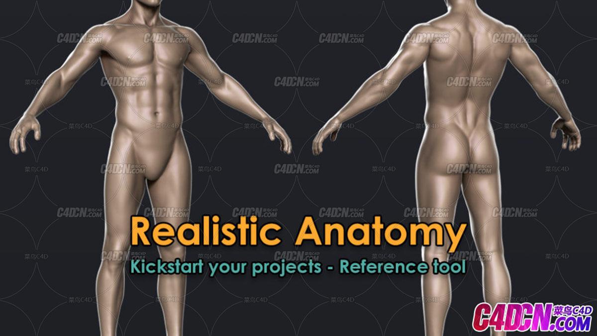 基础人体角色三维模型下载