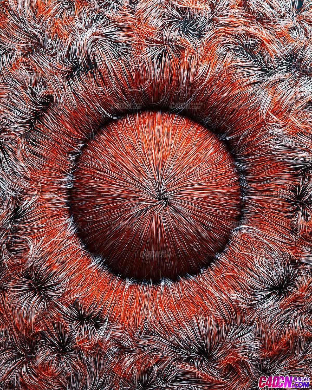 Octane渲染器毛发造型工程