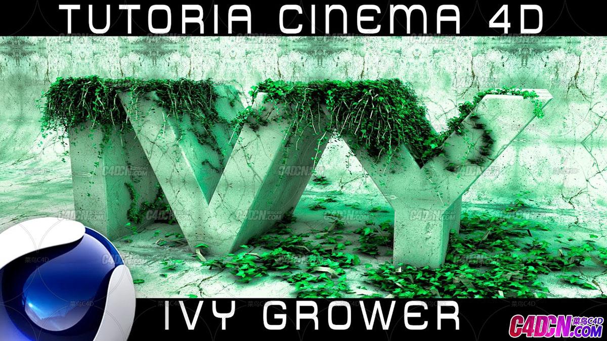IVY GROWER常春藤植物藤蔓插件制作长满藤蔓的文字C4D教程