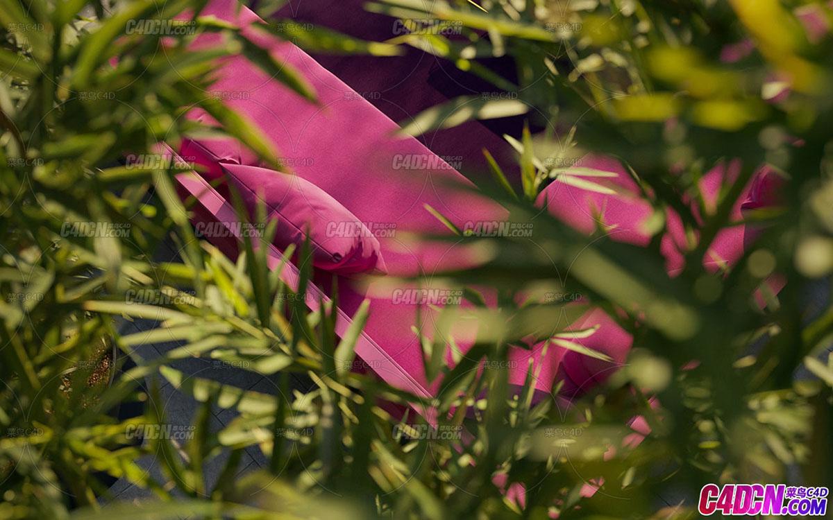 生态竹林竹子植物3D模型 3D Model of Bamboo Plants in Ecological Bamboo Forest