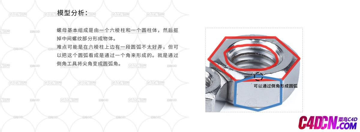 C4D如何创建螺母_02.jpg