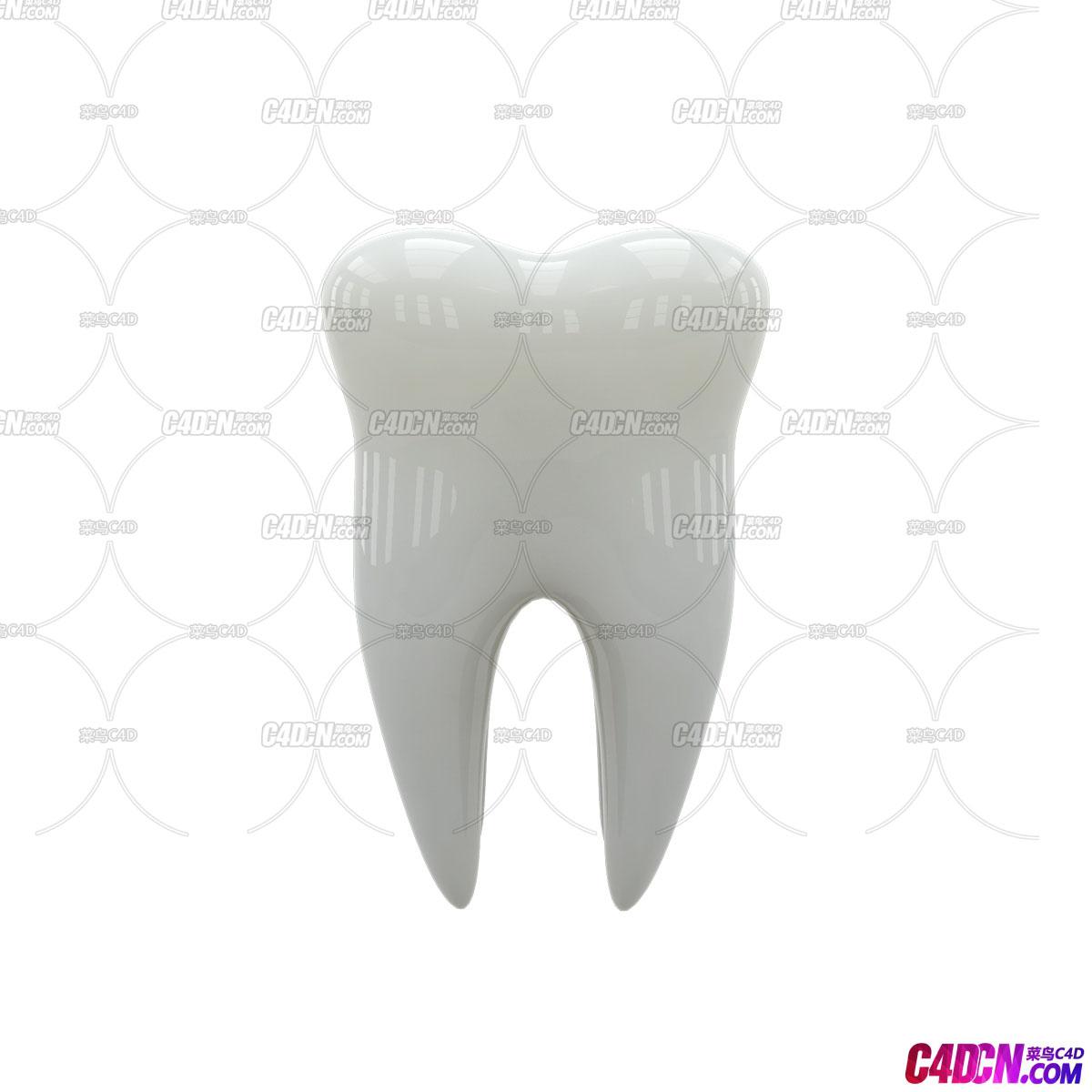 牙齿模型分享