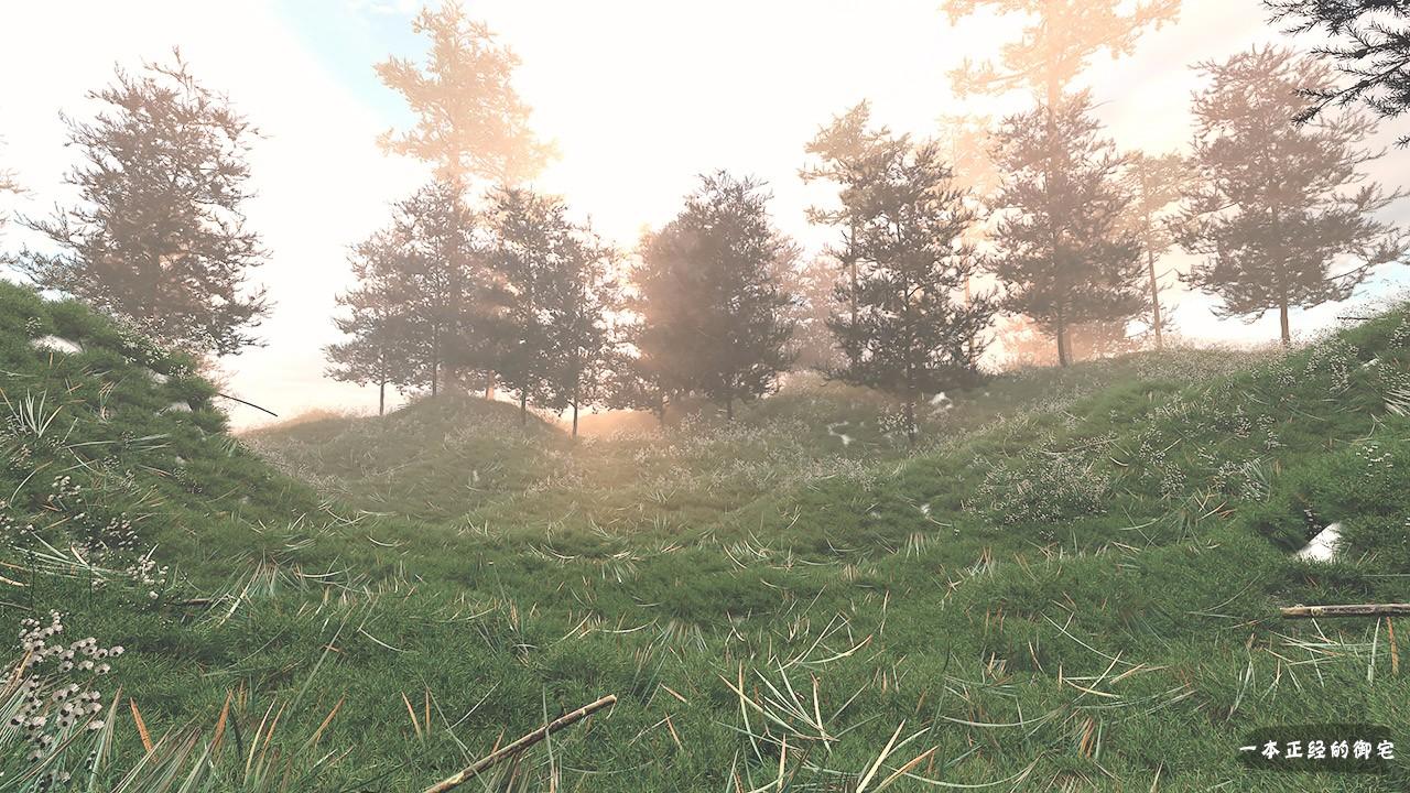 田园1.jpg
