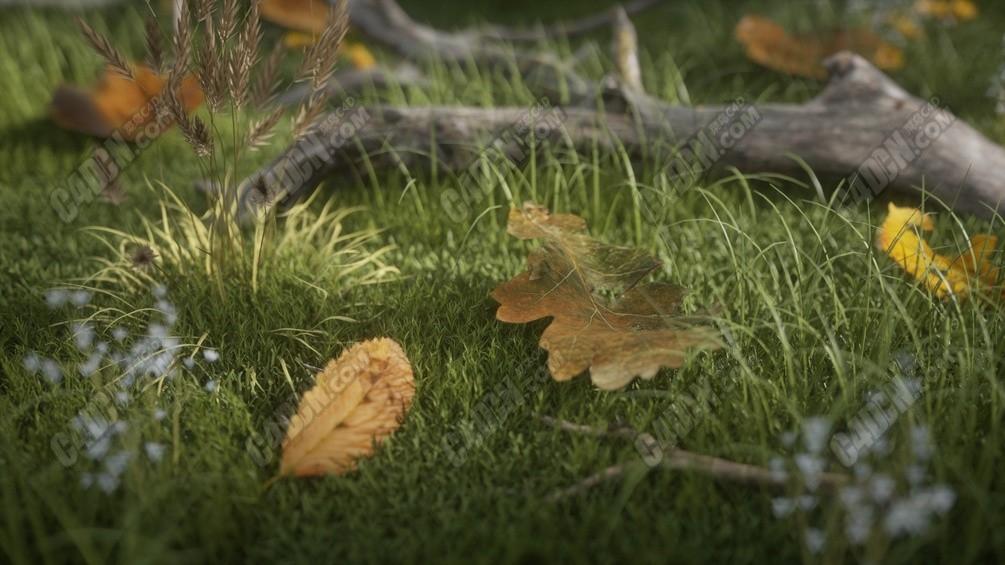 62組Octane渲染器逼真寫實葉子樹葉C4D模型材質合集