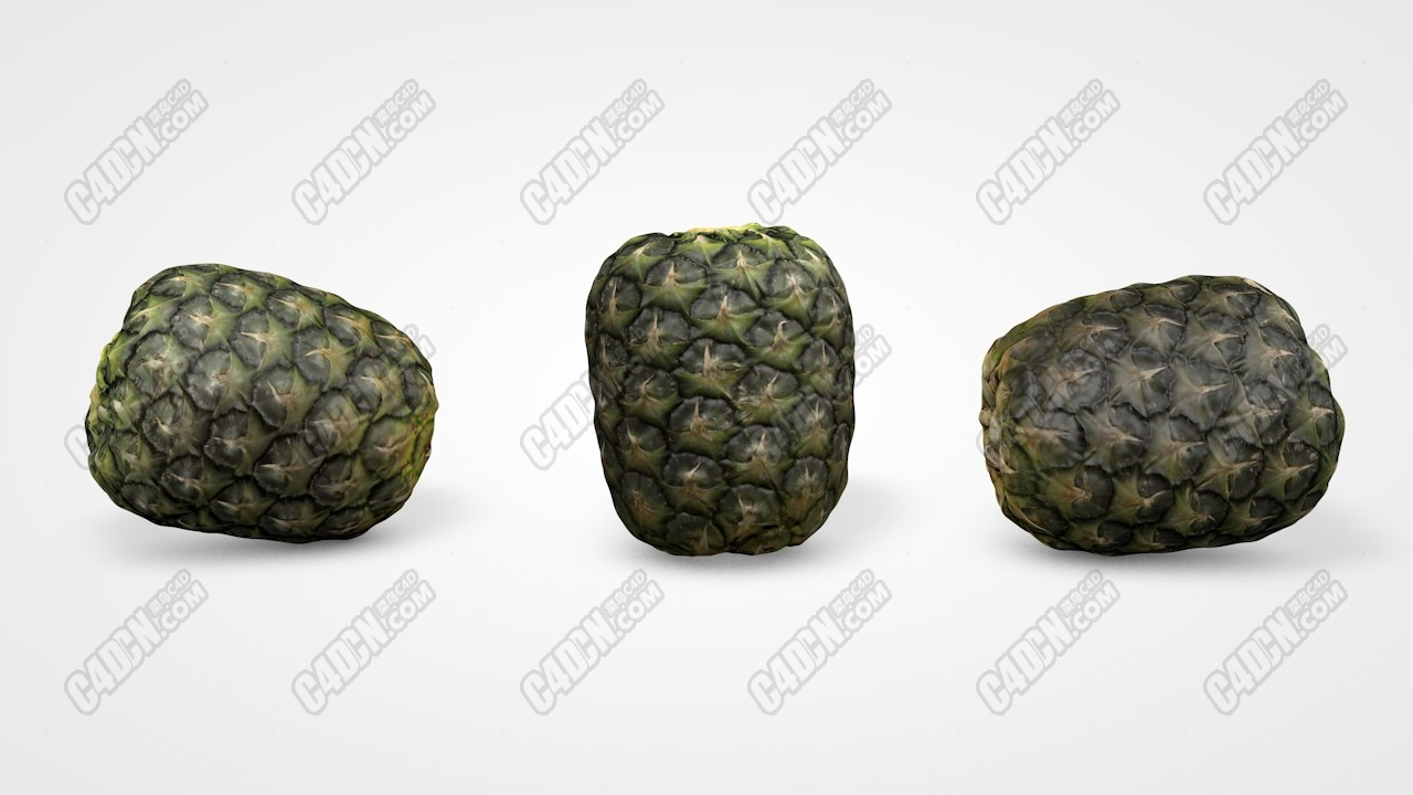 C4D凤梨水果模型 C4D pineapple fruit model