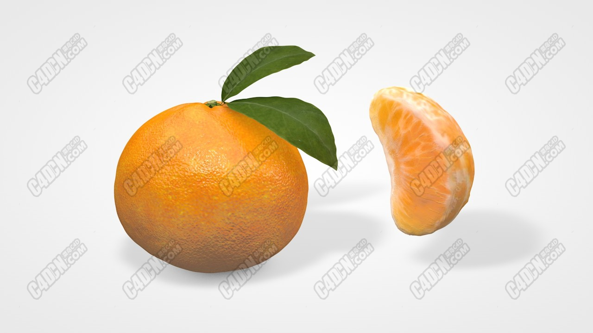 C4D精品C4D橘子桔子瓣儿水果食物C4D模型Orange