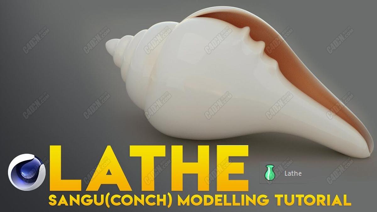 C4D模型-OC渲染器海螺贝壳场景模型