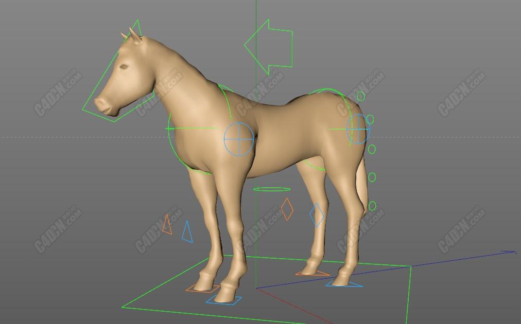 C4D马动物绑定工程模型