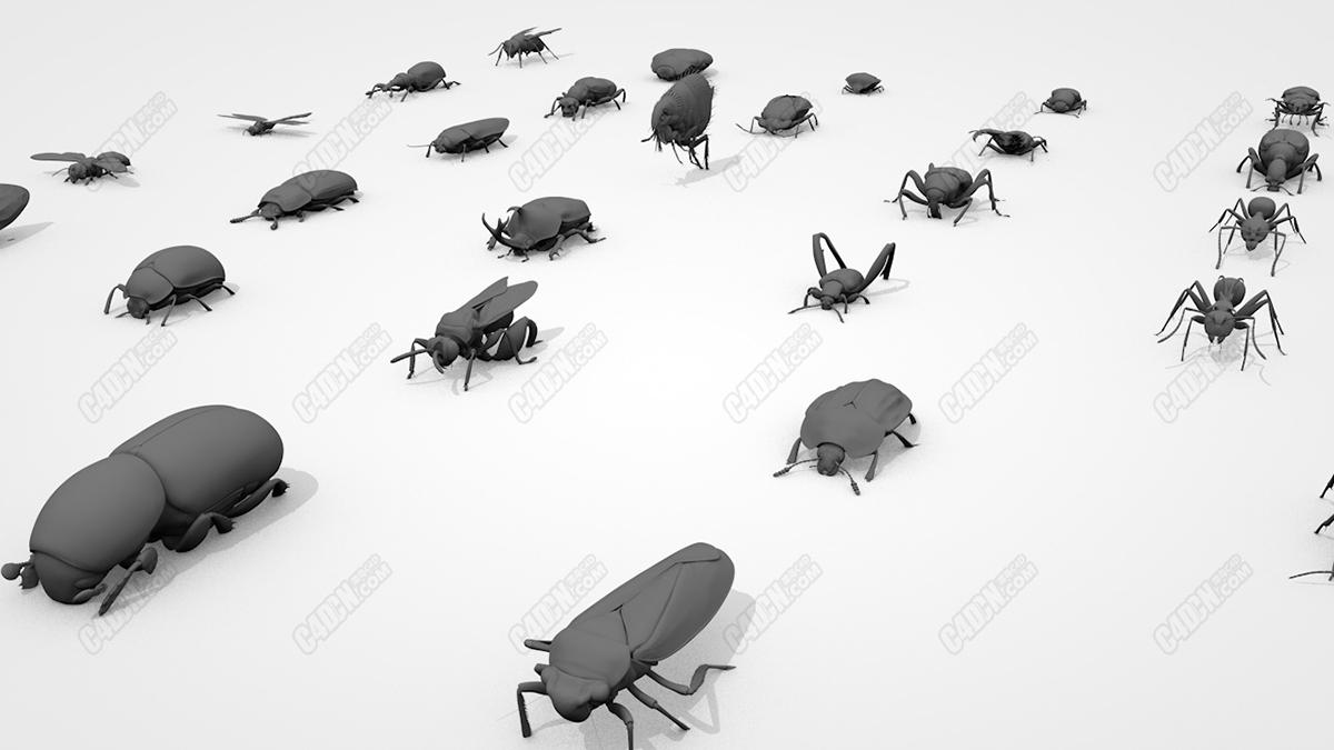60种昆虫生物三维模型素材