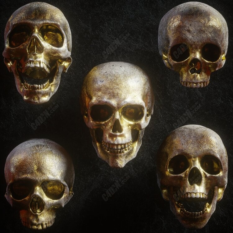 Octane渲染器黄金材质多种表情骷髅头C4D模型