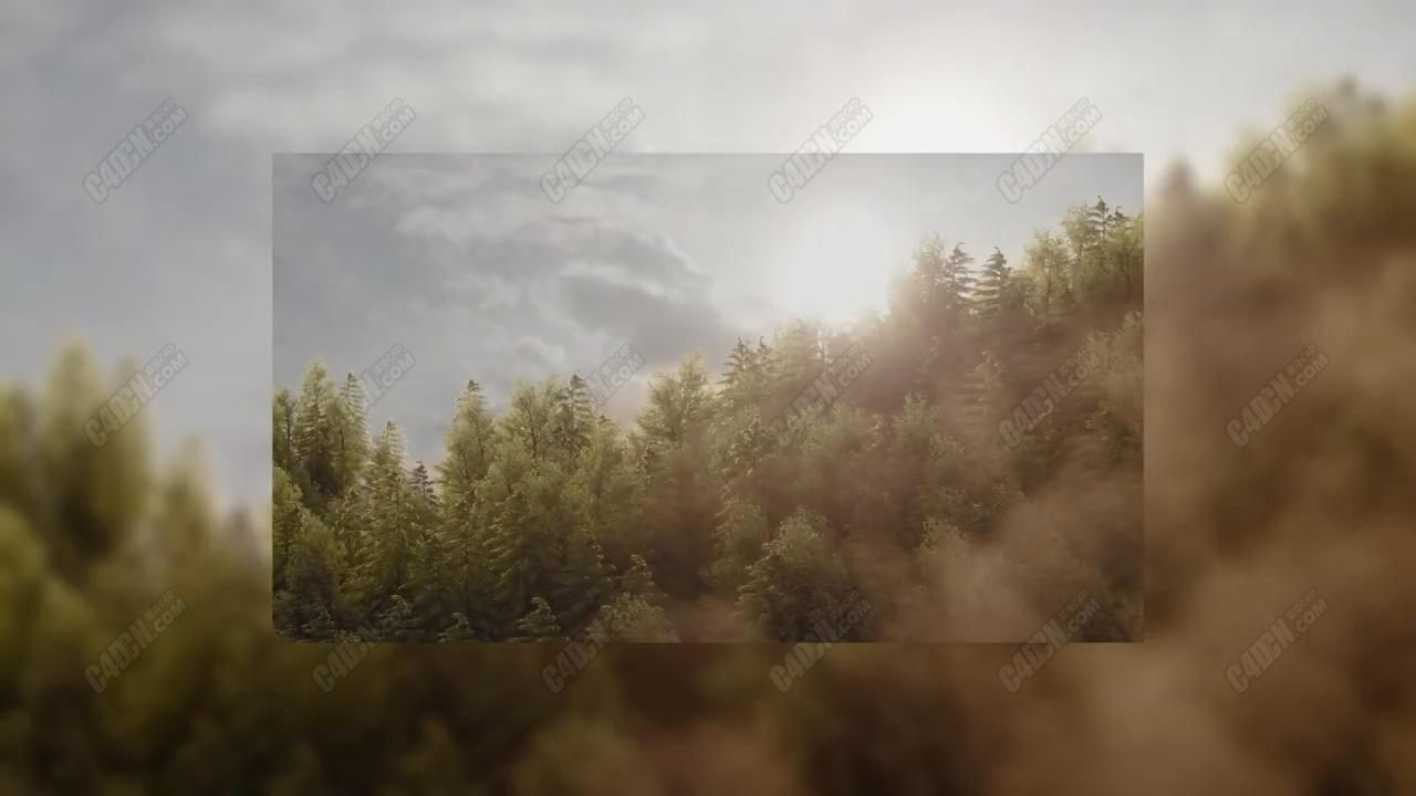 C4D迷雾森林植物场景OC渲染器教程