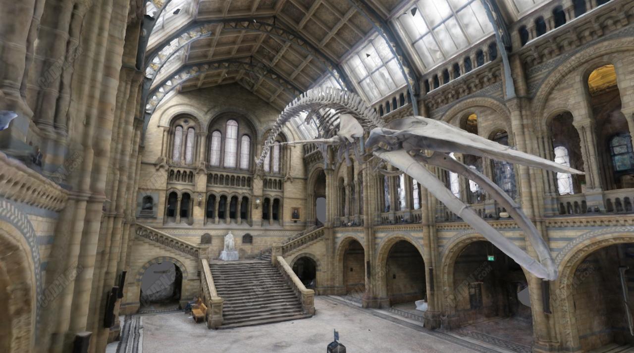 C4D恐龙化石博物馆建筑模型