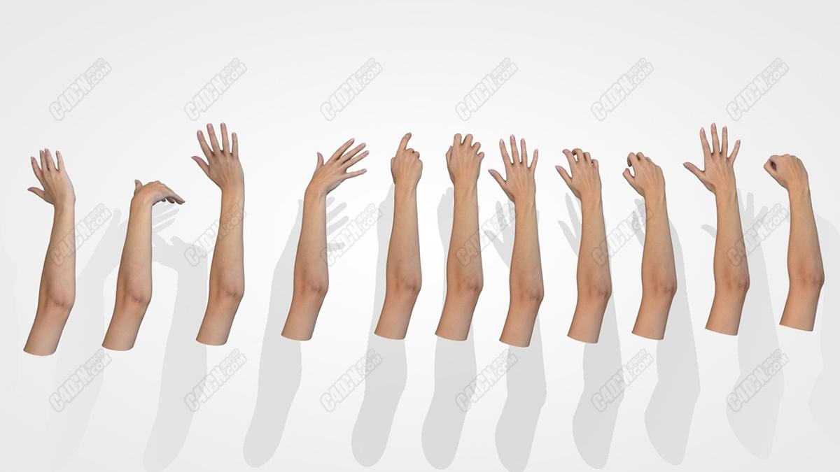 C4D格式11款16K分辨率纹理女性手掌人体模型