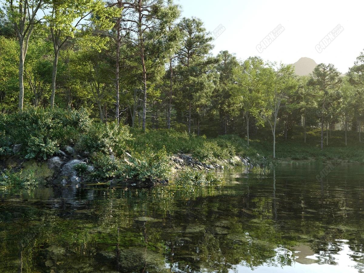 山水胡泊大型自然风光森林植物场景模型