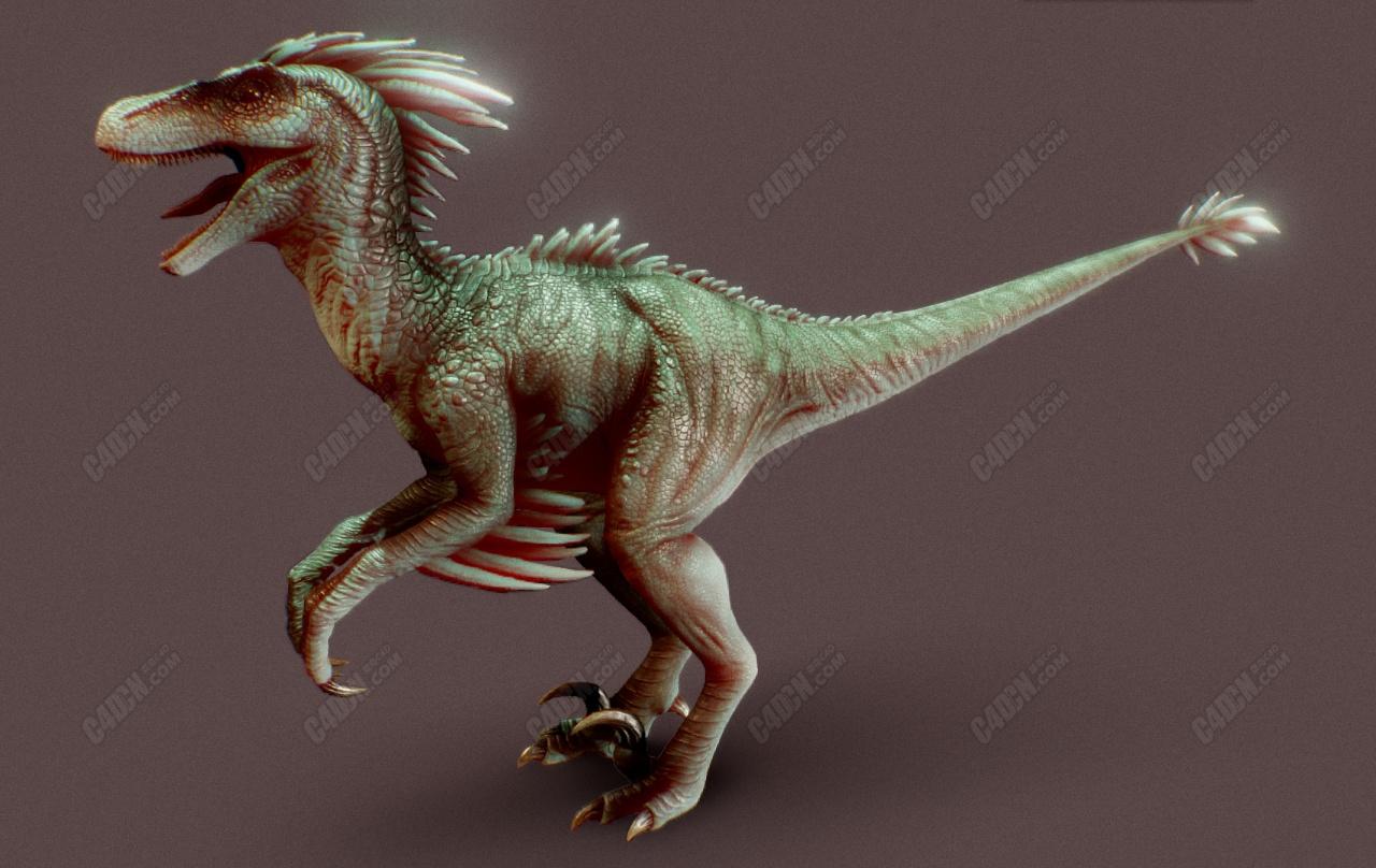 C4D迅猛龙猛禽恐龙模型(含骨骼绑定)