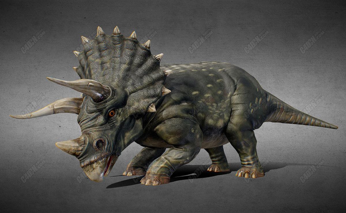 北美白垩纪晚期食草恐龙三角龙C4D模型(含骨骼绑定) ceratophoridae