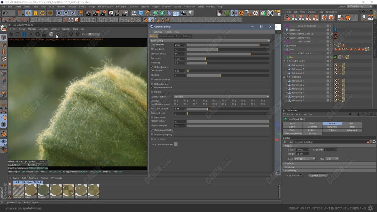 C4D+Octane渲染器制作逼真超寫實絨毛植物建模渲染教程