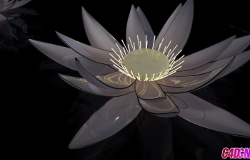 C4D模型 玻璃花朵