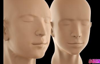 C4D雕刻教程 人头模型多边形笔刷拓扑低模