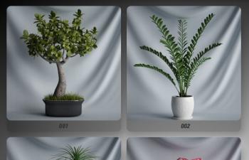 20套C4D模型 盆栽植物插花花瓶模型合集