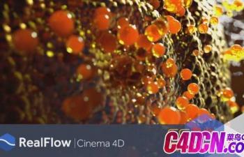 RealFlow C4D R17/R18/R19/R20流体模拟插件