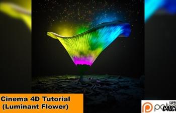 C4D教程-发光的花