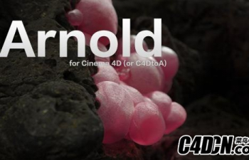 Solid.Angle.Cinema4D.To.Arnold.v2.2.2.3.For.Cinema4D.R19-AMPED