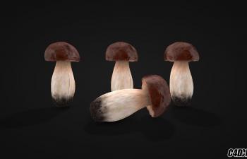 C4D蔬菜模型 蘑菇