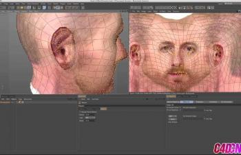 人物头部UV映射调整适配面部C4D教程