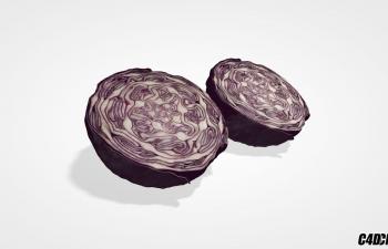 C4D蔬菜模型 紫甘蓝 圆白菜
