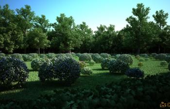 C4D植物生成插件汉化版 Laubwerk SurfaceSPREAD V1.0.34 R12-R16 Win