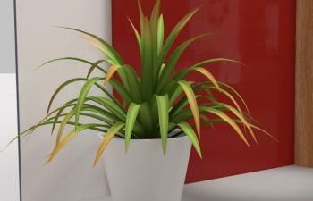 C4D植物盆栽
