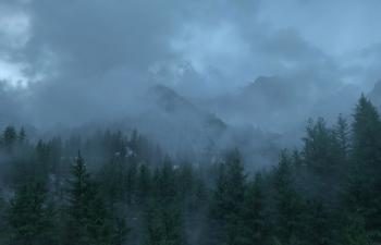 《迷雾山林》
